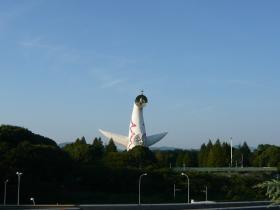 大阪・万博記念公園15