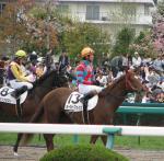桜花賞2008-5