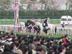 桜花賞2008-6