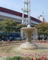 横浜公園16a