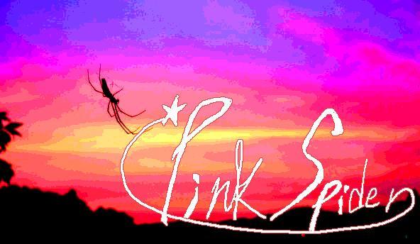 pinkspider.jpg