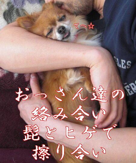 Aブログ6111