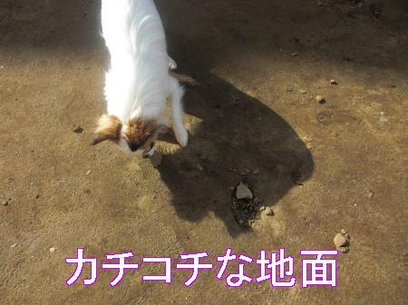 Aブログ07071