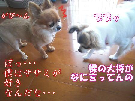 Aブログ07087