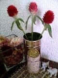 12strawberry
