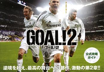goal2-1.jpg
