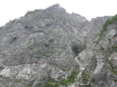 20090524-b2.jpg