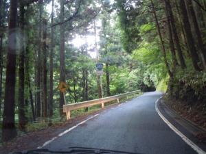 国道363
