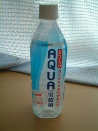 AQUA乳酸菌