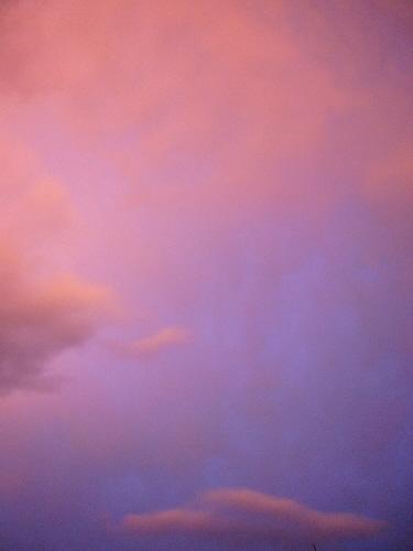 真上の空はこんな感じ
