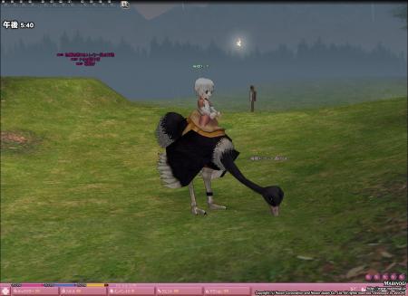 mabinogi_2007_08_30_001.jpg