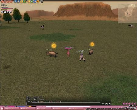 mabinogi_2007_09_20_0006.jpg