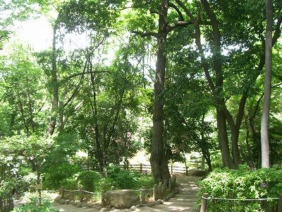 有栖川宮記念公園6