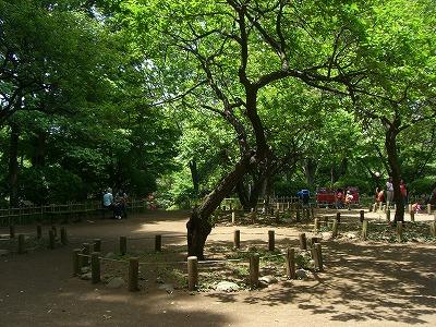 有栖川宮記念公園5