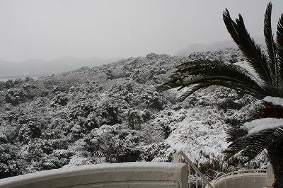 H22激動の年を象徴するような幕引き大雪