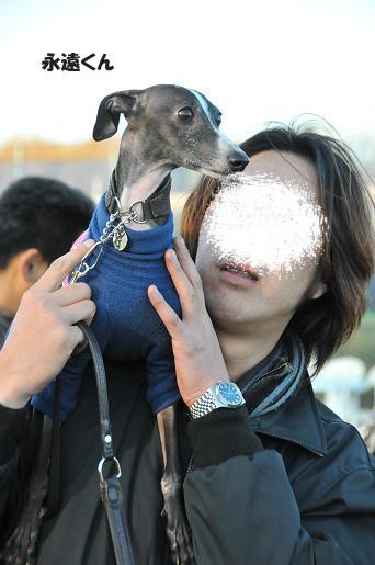 ドッグラン松戸09020133