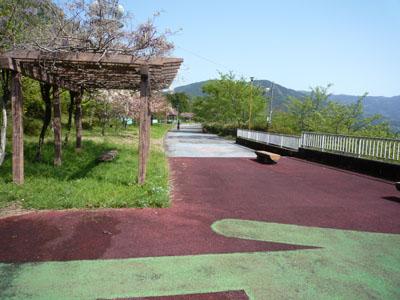 20100429 (13)
