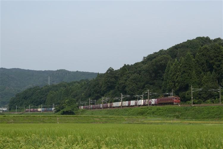 EF81-76 細呂木~牛ノ谷間