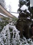 2008年初詣2