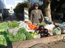 野菜の屋台