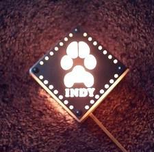 INDY-02.jpg