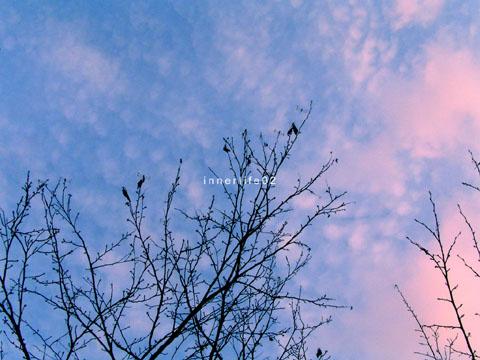 sky05.jpg