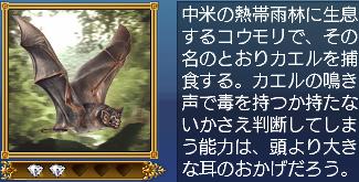 カエルクイコウモリ・説明