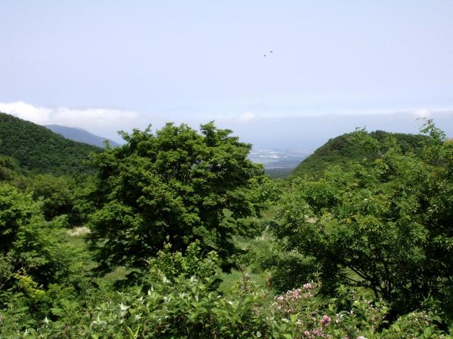 大山の景色・其乃参