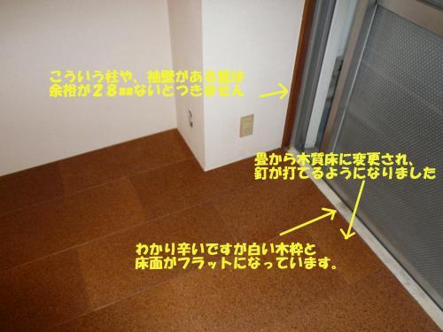 P1010706moji_convert_20101021083216.jpg