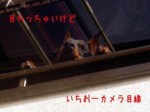 beranda2.jpg