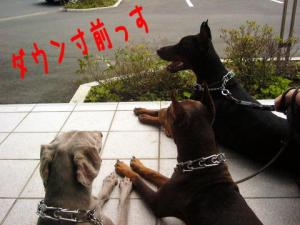 byouinmae1.jpg