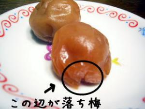 umeboshi2.jpg