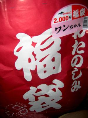 20090104f.jpg