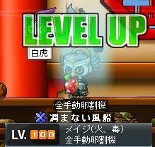 Maple0003_20080815112337.jpg