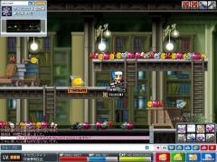 Maple0003_20080830011959.jpg