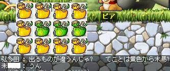 Maple0027_20080828122608.jpg