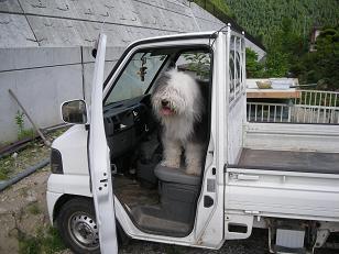 軽トラに乗る楽太郎