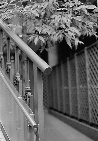 Kodak Retina Ⅲc  新宿