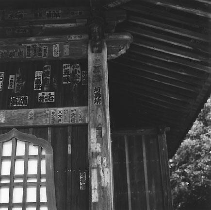 HASSELBLAD 500C/M  鎌倉