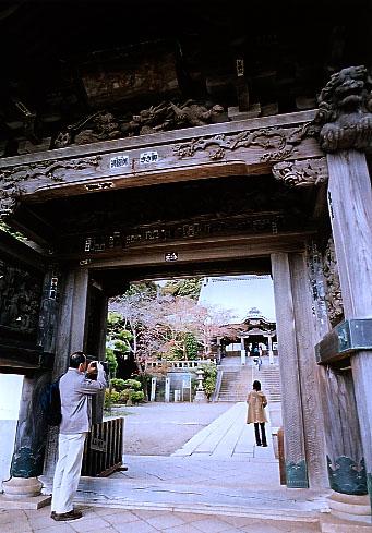 PENTAX MG  鎌倉