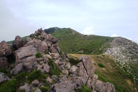 星生崎から星生山への登山道CIMG0083