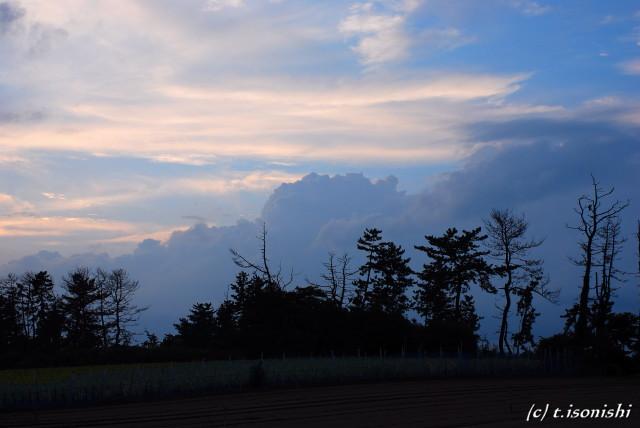新潟の夕焼け(2008/8/15)