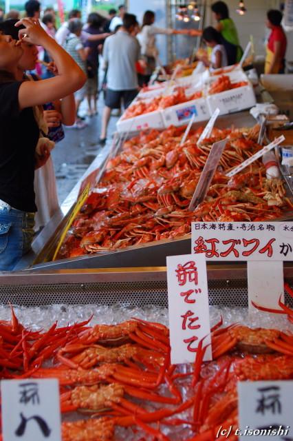 魚のアメ横(2008/8/16)