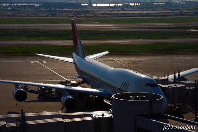 JALの本拠地(2008/10/4)