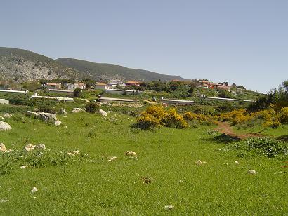 2007Marchnohara.jpg