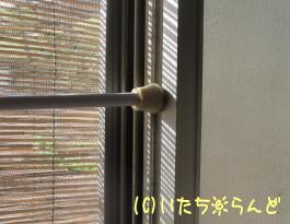 06-0409-03.jpg