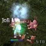 job47.jpg