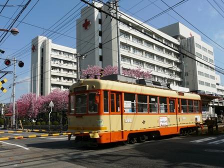 松山赤十字病院前 市内電車と