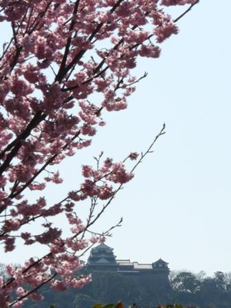 松山大学グラウンド
