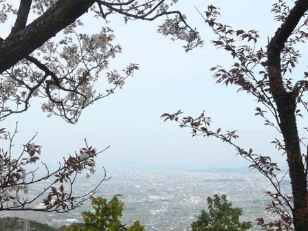 塩ヶ森ふるさと公園 桜 2